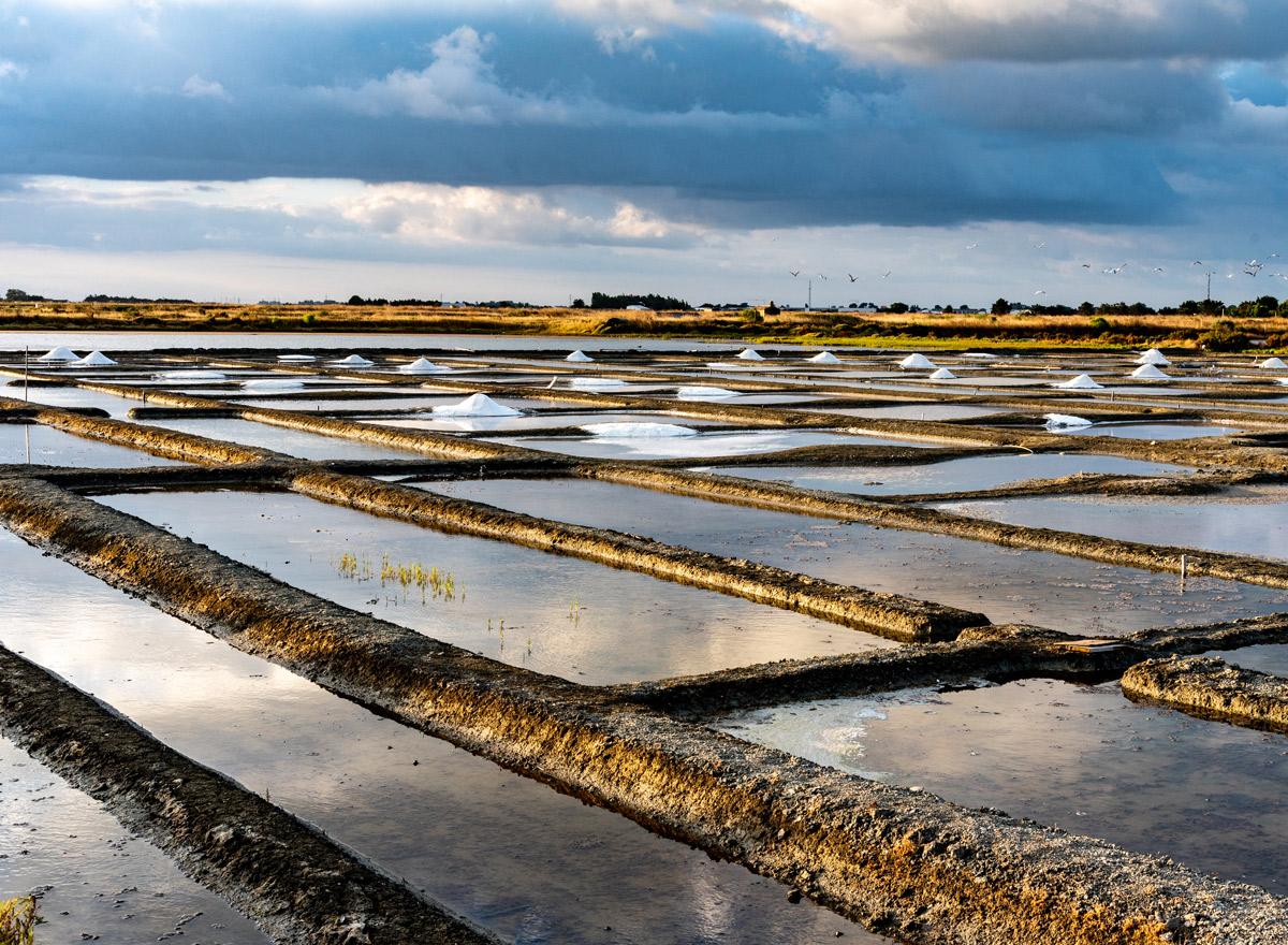 Salzgewinnung auf Noirmoutier