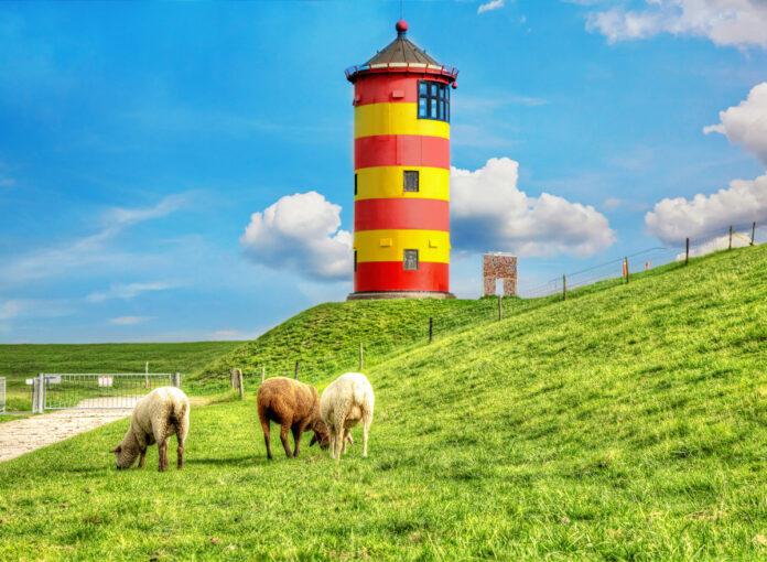 Urlaub an Ostsee oder Nordsee? Schafe vor dem gestreiften Leuchtturm Pilsum an der Nordsee in Krummhörn